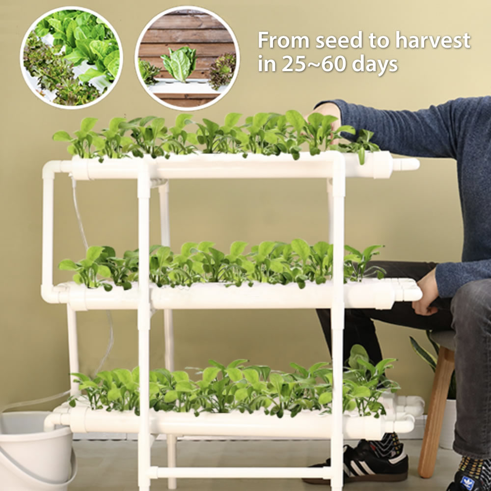 Home Hydroponic Kit Free Shipping All Across Usa Canada
